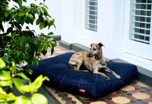 Snooza's TUFF Summer Beds